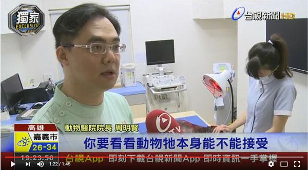 新聞專訪高雄亞幸動物醫院,院長暢談整合中西療法,讓毛小孩吃中藥與針灸復健。