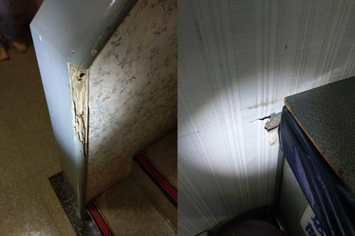 天花板、柱邊、牆壁出現蛀孔?小心!白蟻已全面入侵。