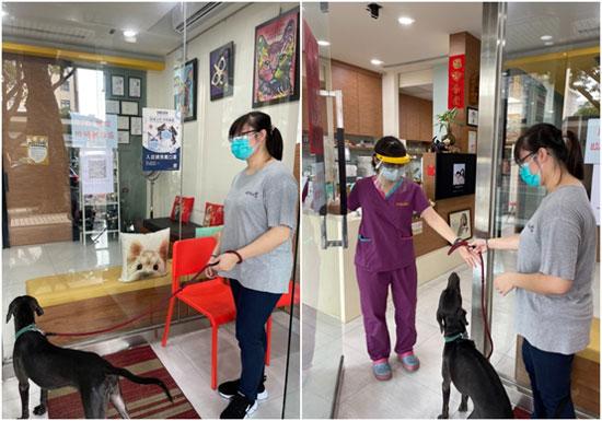 恩澤動物醫院加強科技設備,推「低接觸門診」。