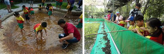 抓泥鰍、釣青蛙、昆蟲觀察體驗、射漆彈,各種初體驗讓乖寶貝幼兒園孩子意猶未盡。