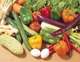 生技養身,養生調理,生物科技,保健食品,健康食品,營養食品,養生食品