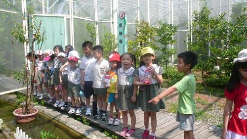幼儿园穿鞋的步骤分解图片
