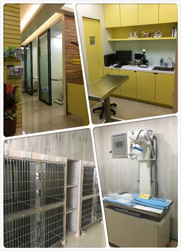 啄木鳥動物醫院安南分院嶄新的空間與設備,獨立的門診空間、住院部與X光室,將為毛小孩帶來更舒適的醫療體驗。