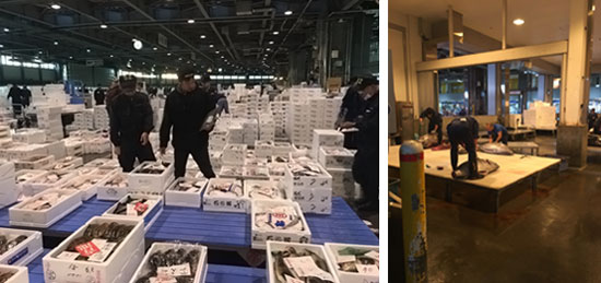 大成根島生態蝦,月世界黑羽放山雞,日本北海道帝王蟹,日本進口食材,海鮮宅配網