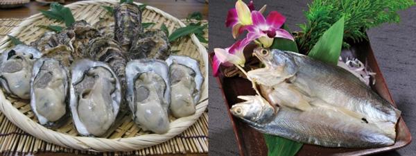 嚴選優質海鮮組:日本播磨灘3L大牡礪、根島野生午仔魚。