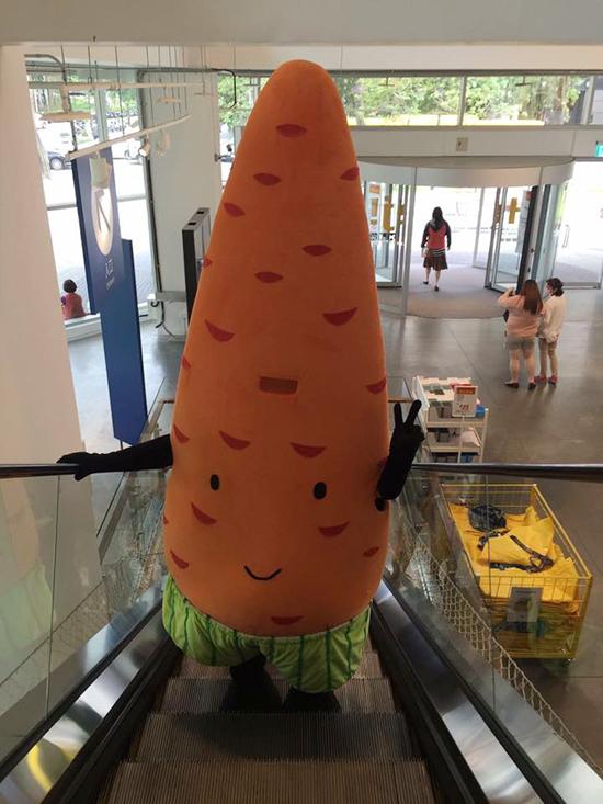 紅蘿蔔玩偶變成大型「人偶裝」,在IKEA賣場可是眾所矚目的焦點!